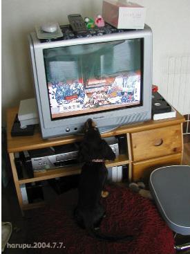 TV-kansatu.jpg