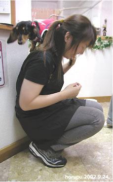 kyowaiyo.jpg
