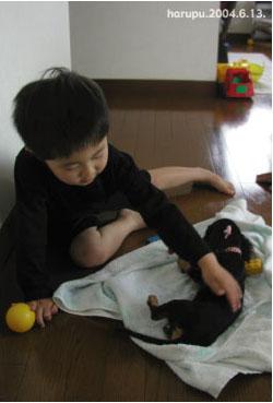 oi-brother-kid.jpg